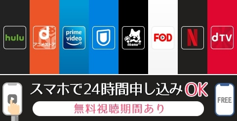 ゲーマー必見!期間無料でも視聴可能なVOD・動画配信サービス