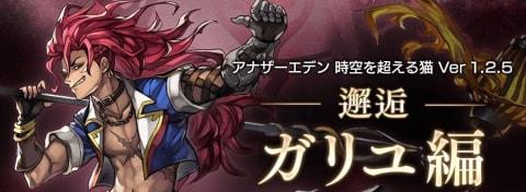 ガリユ編【邂逅攻略】