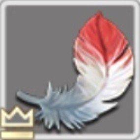 ふかふかの羽毛