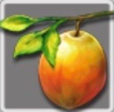 ウィッシュフルーツ