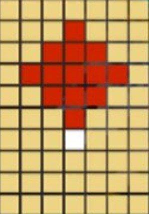 5×5十字範囲