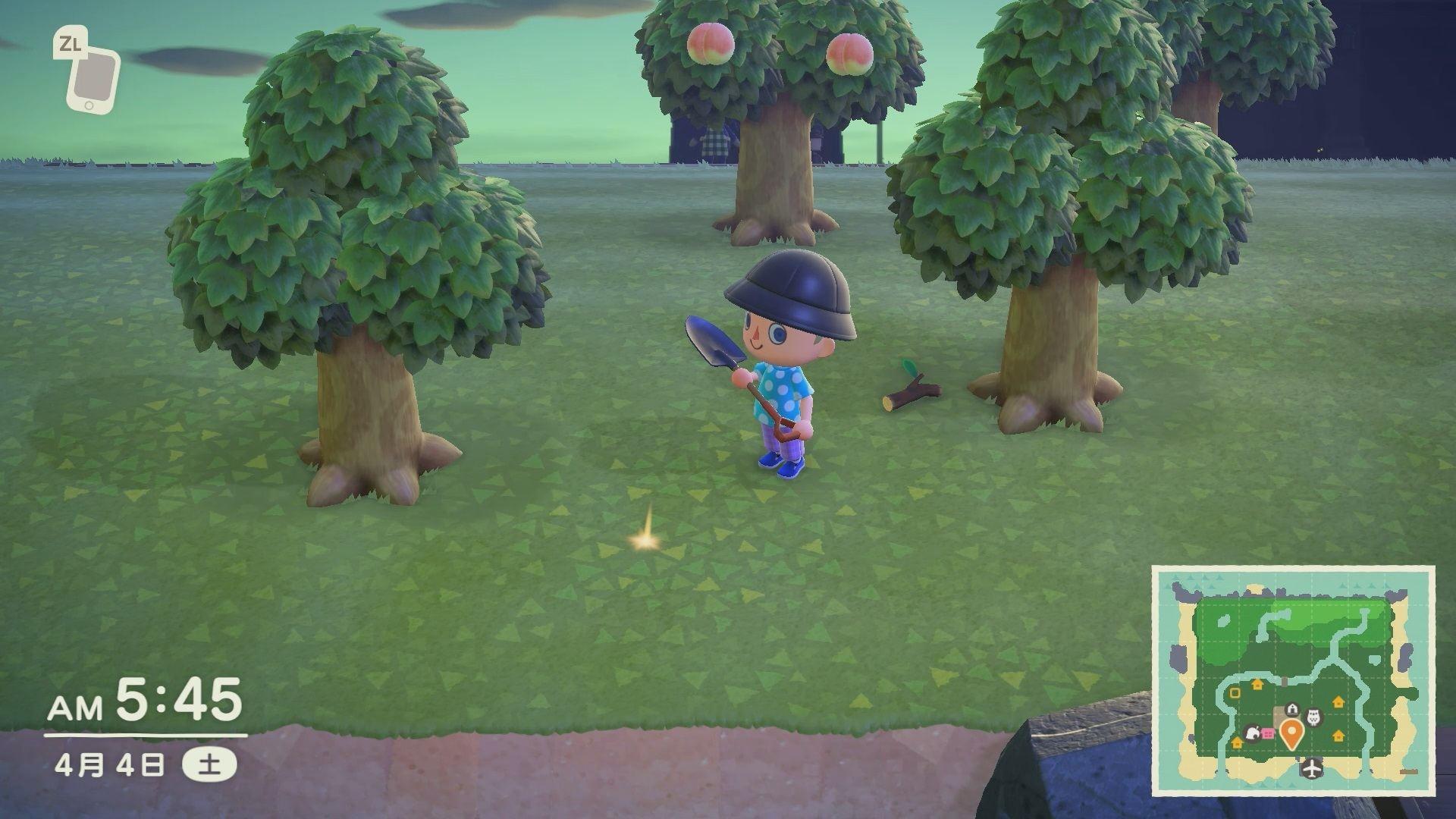 ベル 埋める 森 あつ