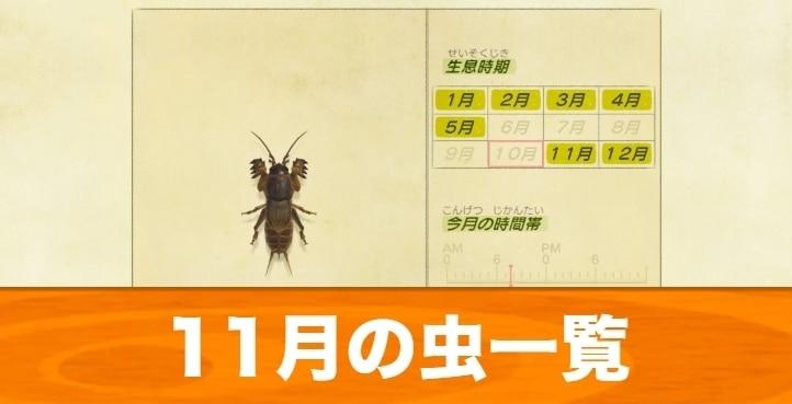 11月の虫一覧|値段と入手場所
