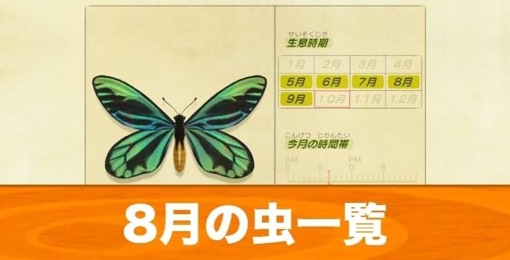 8月の虫一覧|値段と入手場所