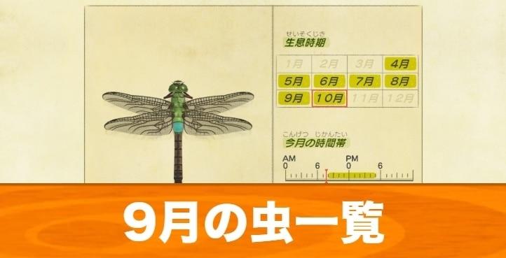 9月の虫一覧|値段と入手場所