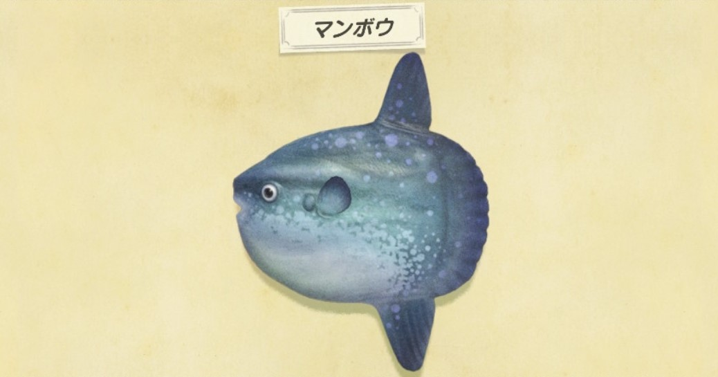 森魚 南半球 あつ 【あつ森】レアな海の幸・魚・虫ランキングと入手するコツ