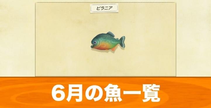 あつ森 魚 値段 高い順