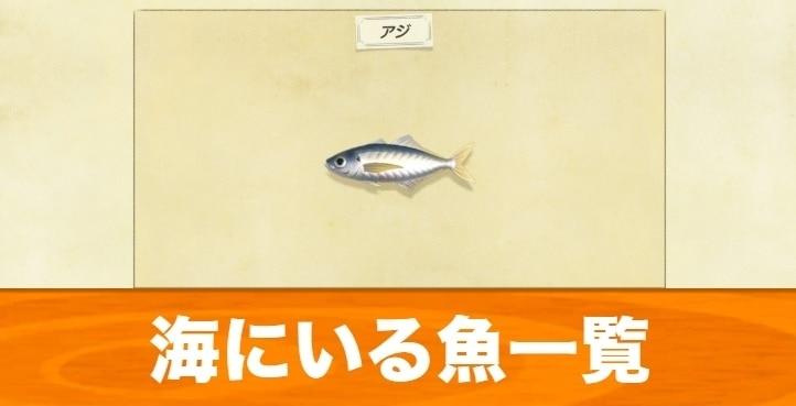 海にいる魚一覧|値段と出現時期