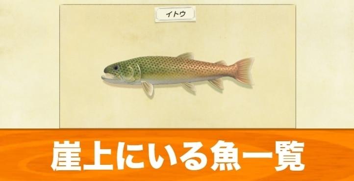 崖の上にいる魚一覧|値段と出現時期
