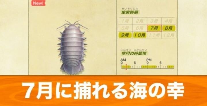 あつ森 7月 虫