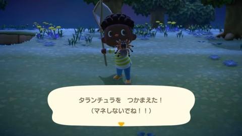 森 島 シーラカンス うずまき あつ