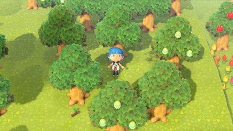 はっぱのたまごが生えている広葉樹