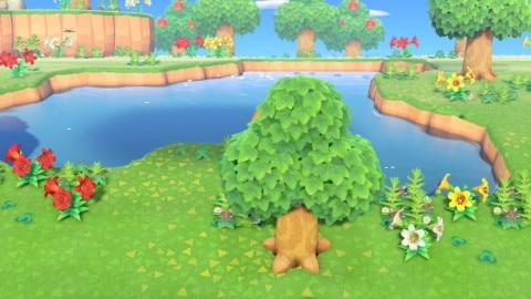 大きな池のある島
