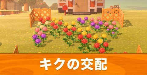あつ森 花の家具
