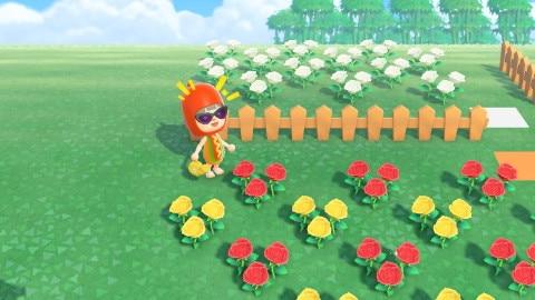 あ つもり 花 の 交配
