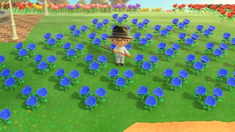 花畑(青いバラバージョン)