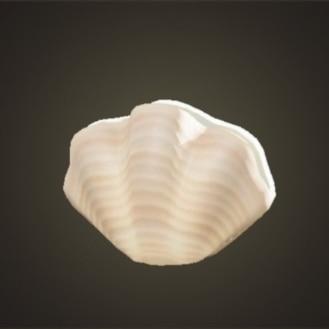 かいがらのランプ