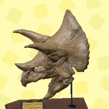 トリケラトプスのあたま