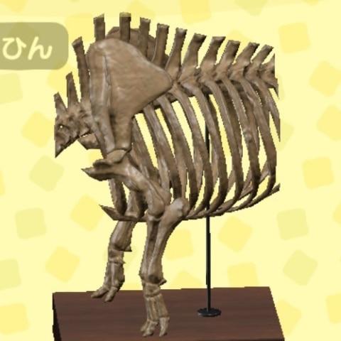 できない 化石 寄贈 あつ 森