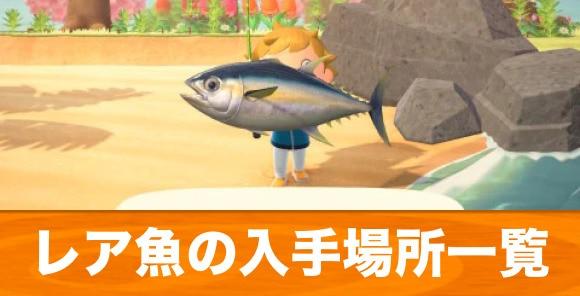 レア魚の入手場所まとめ