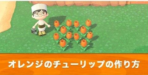 オレンジのチューリップの作り方