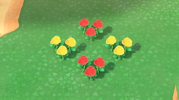 赤と黄色のバラ