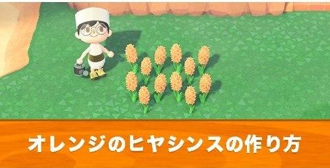 あつ森オレンジヒヤシンス
