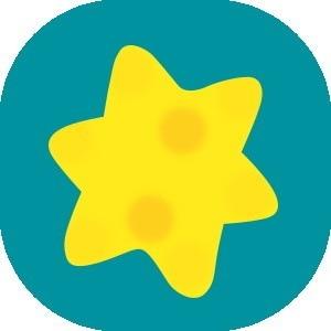 流れ星(流星群)