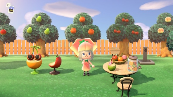 綺麗め果樹園