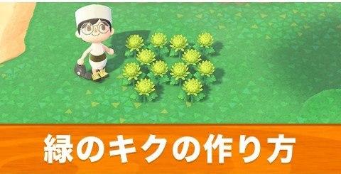 緑のキクの作り方