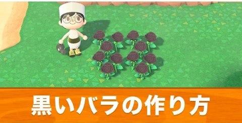 黒いバラの作り方