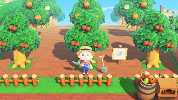 シンプルな果樹園
