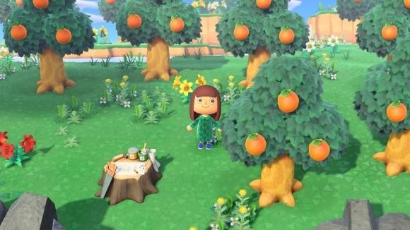 フルーツ の あつまれ どうぶつ 森