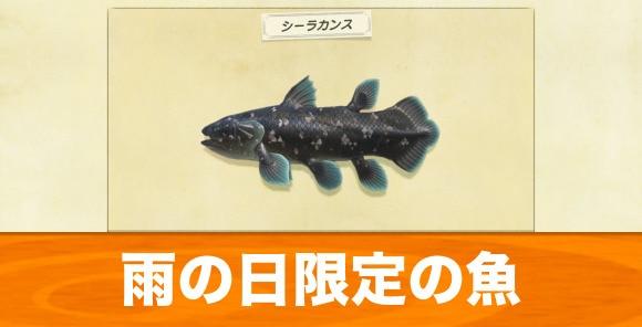 雨の日限定の魚・虫
