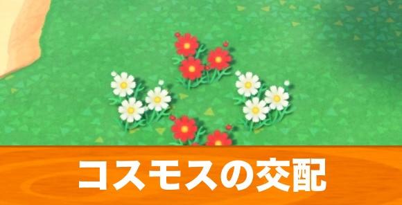 花 あつ 方法 森 交配