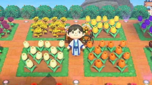 オレンジのチューリップのレイアウト