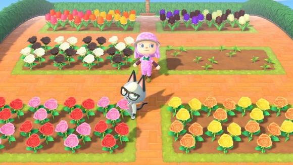 シンプルな花畑