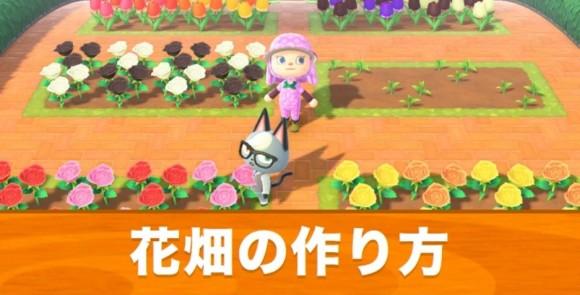 花畑の作り方とレイアウト丨おしゃれな花壇