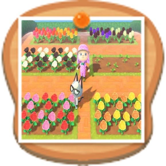 花畑のレイアウト