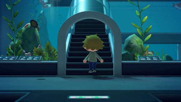 魚エリア階段
