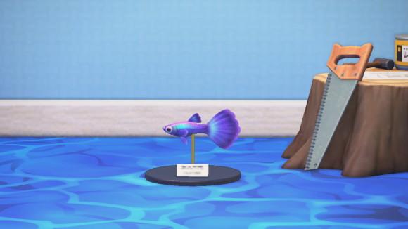 模型 幸 森 海 あつ の