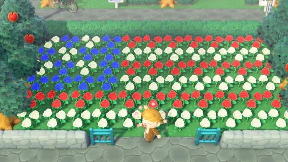 アメリカ国旗の花畑