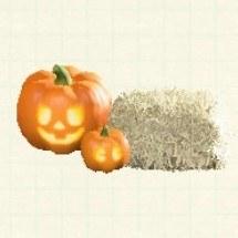 ランタンセットオレンジ