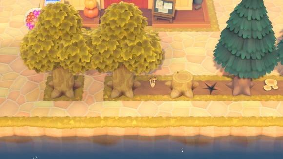 木の周囲を塗装する