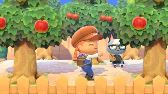 ブドウの収穫祭