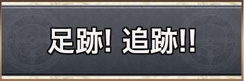 足跡!追跡!!|チャート13