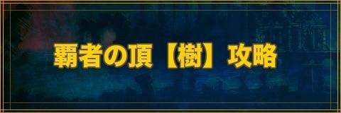 覇者の頂[樹]攻略とおすすめパーティ