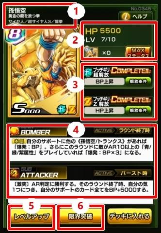 カード詳細の解説