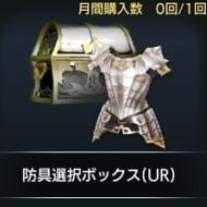防具選択ボックス(UR)