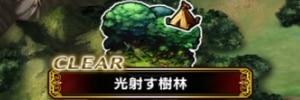 光射す樹林【探索マップ/隠し通路/宝箱/クエスト】
